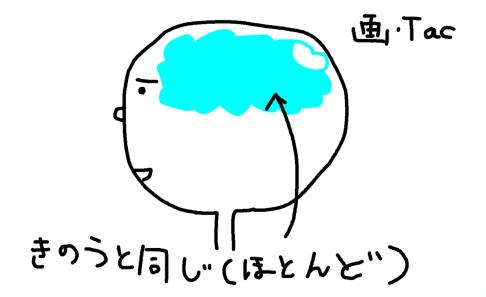 英語学習に失敗した人向けのコーチングスクールNLPE【怪しい!?】
